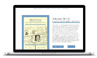 Custom made WordPress design for ComitesOlanda